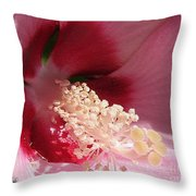 Hibiscus Moscheutos Named Luna Pink Swirl Throw Pillow