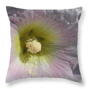 Hollyhock Named Indian Spring Pink Throw Pillow