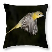 Hooded Oriole Throw Pillow
