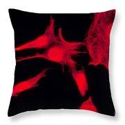 Human Fibroblasts Throw Pillow
