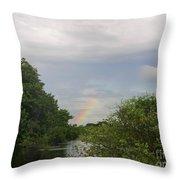 IImages From The Pantanal Throw Pillow