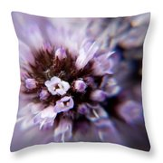 Spring Is Bursting Out All Over. Throw Pillow