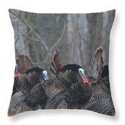 Jake Eastern Wild Turkeys Throw Pillow