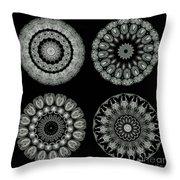 Kaleidoscope Ernst Haeckl Sea Life Series Black And White Set On Throw Pillow by Amy Cicconi