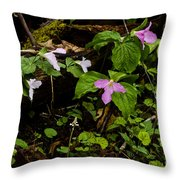 Large Flowered Trillium  Throw Pillow