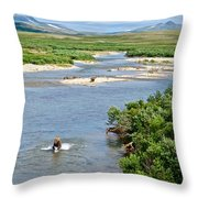 4-lay Of The Land Many Grizzly Bears In Moraine River In Katmai National Throw Pillow