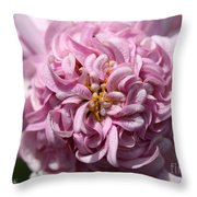 Marguerite Daisy Named Double Pink Throw Pillow