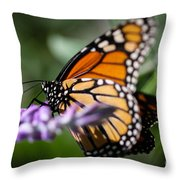 Monarch Danaus Plexippus Throw Pillow