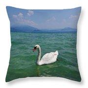 Mute Swan. Sirmione. Lago Di Garda Throw Pillow