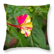 4 Oclocks Throw Pillow