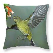 Orange-crowned Warbler Throw Pillow