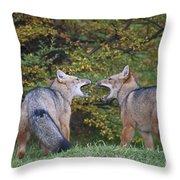 Patagonian Red Fox Throw Pillow