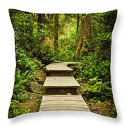 Path In Temperate Rainforest Throw Pillow