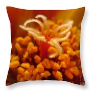 Portulaca In Orange Fading To Yellow Throw Pillow