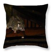 Possum Throw Pillow
