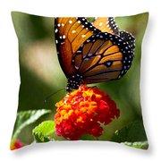 Queen Butterfly  Throw Pillow