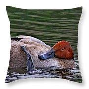 Redhead Duck Throw Pillow