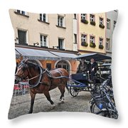 Regensburg Germany Throw Pillow
