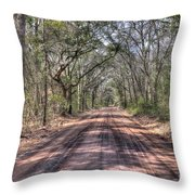 Road To Angel Oak Throw Pillow