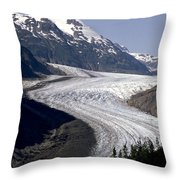 Salmon Glacier Throw Pillow