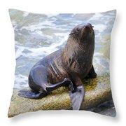 Sea Lion Throw Pillow by Alexey Stiop