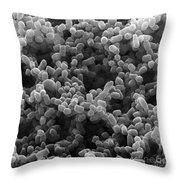 Sem Of Escherichia Coli Throw Pillow