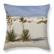 Soaptree Yucca In Gypsum Sand White Throw Pillow