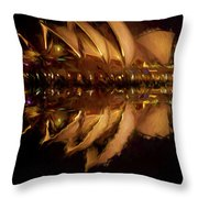 Sydney Opera House Abstract Throw Pillow