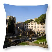 The Sacred Area Of Largo Argentina Throw Pillow