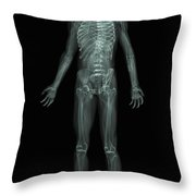 The Skeletal System Throw Pillow