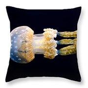 The Spotted Jelly Or Lagoon Jelly Mastigias Papua. Throw Pillow