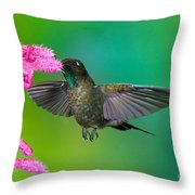 Tyrian Metaltail Throw Pillow