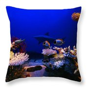 Underwater Scene Throw Pillow