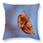 #withinmealunaticsings Throw Pillow