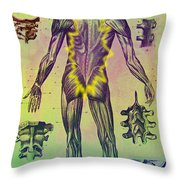 Vertebrae Throw Pillow