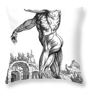 Vesalius: Muscles, 1543 Throw Pillow