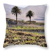 Vineyard On Lanzarote Throw Pillow