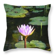 Pond Of Water Lily Throw Pillow