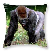 Western Lowland Gorilla Throw Pillow