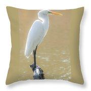 Still Waters White Heron Throw Pillow