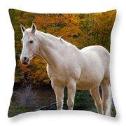 White Horse In Autumn Throw Pillow