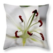 White Lily In Macro Throw Pillow