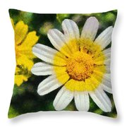 Wild Daisies Throw Pillow