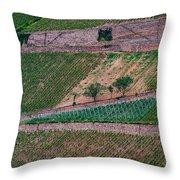 Wine Of Rhine Throw Pillow