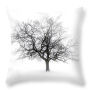 Winter Tree In Fog Throw Pillow