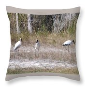 Wood Storks Throw Pillow