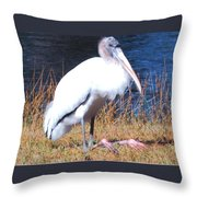 Woodstork Throw Pillow