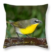 Yellow-breasted Chat Throw Pillow