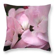 Zonal Geranium Named Tango Light Orchid Throw Pillow