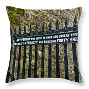 40 Shillings Throw Pillow